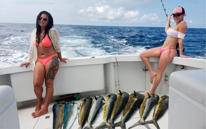 Fish Off, Sport Fishing Herradura Bay, Jaco Beach Costa Rica